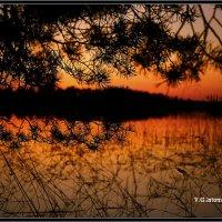 Вечер на озере :: Виктор Истомин