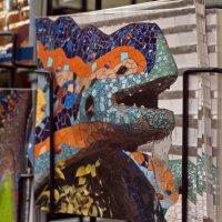 игуана с обложки :: Ольга Киселева