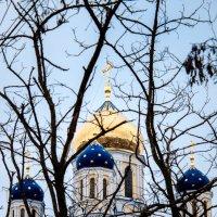 Собор в Ельце :: Денис Неклюдов