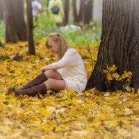 в осеннем парке :: Дмитрий Сушкин
