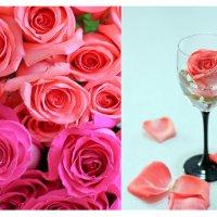 Розы :: Nataliya Belyaeva
