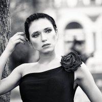 Анастасия :: Алексей Базякин