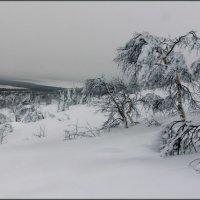 Зимние зарисовки :: Игорь Чубаров
