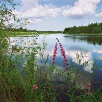 На Модлоне - реке :: Валерий Талашов