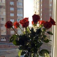 розы в вазе :: Лидия кутузова