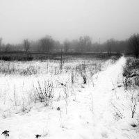 Зима :: Anastasia M