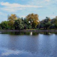 На Терлецких прудах :: Наталья Лакомова