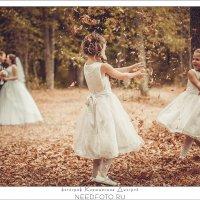Wedding :: Дмитрий Кирющенков