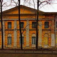 вертикали :: Александр Шурпаков