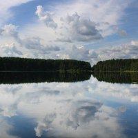 Полдень на озере. :: Наталья Цветкова