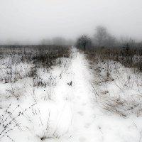 Зимняя тоска :: Anastasia M
