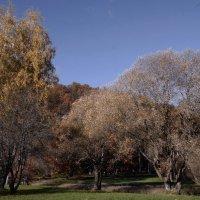 Природа в осень :: Михаил Новиков