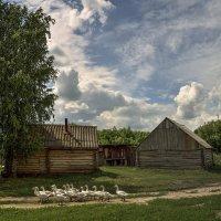 в деревне :: Андрей ЕВСЕЕВ