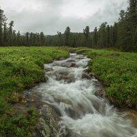 ручей Медвежий в затишье между дождями :: Дамир Белоколенко