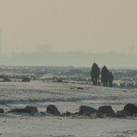 Балтийский берег. Зима. :: Павел Дунюшкин