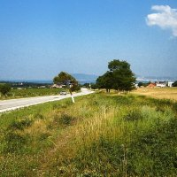 Дорога в село Кабардинка :: Виталий Бараковский