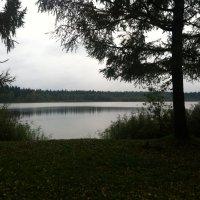Вечер на озере :: Мария Погодина