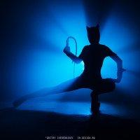 Catwoman :: Дмитрий Чередников