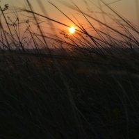 закат.... :: Inna Kharisova
