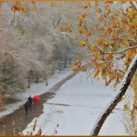 Первый снег :: Viktor Eremenko