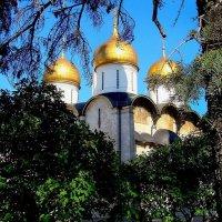 Кремль изнутри. :: Константин Рыбалко
