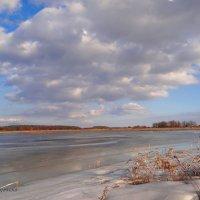 Февральский пейзаж. Зима, лёд на поле... :: Антонина Гугаева