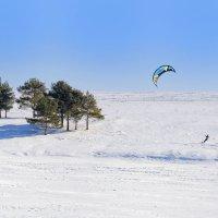 Оседлавший ветер :: Валерий Шибаев
