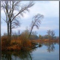 Озеро и утро :: Александр