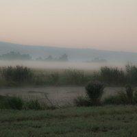 Утро туманное ... :: Павел L