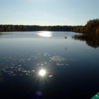 Солнце в озере :: Александр Ефанов