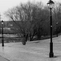 в парке :: елена брюханова
