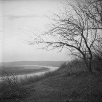 Осень :: Александр Гапонов