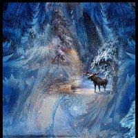 Любимый север :: Евгений Усатов