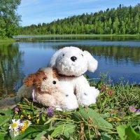 У лесного озера :: Анастасия Белякова