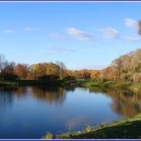 Озерцо, тоже в парке. :: Владимир Гилясев