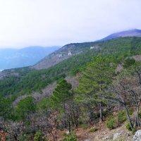 панорама Ялта :: LENUR Djalalov
