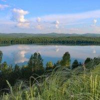 Ковыль-трава над озером Инголь. :: Наталья Юрова