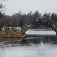В старом сердце весна :: sv.kaschuk