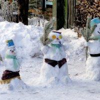 Ребята с нашего двора. :: A. SMIRNOV