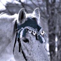 Ярмарочный конь :: Татьяна