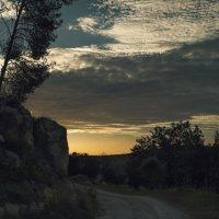 Вечер в лесу :: Lidiya Dmitrieva