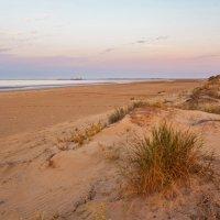 Утро на Персидском заливе... :: Ирина Токарева