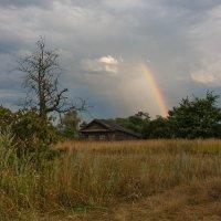 После дождичка... :: Дмитрий Гортинский