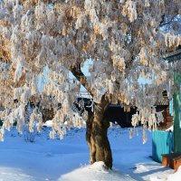 Последний зимний день :: Геннадий Ячменев