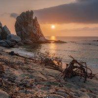 Дикий пляж :: Эдуард Ефремов