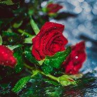 Цветочное настроение :: Марина Массель
