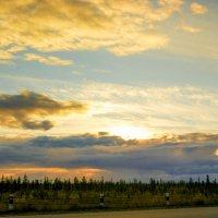 Вечернее небо :: Наталья Филипсен
