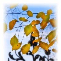 Осень :: Цветков Виктор Васильевич