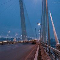 Утро на Золотом Мосту. г. Владивосток :: Григорий Шаров