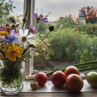 На дачном окне. :: Лилия *